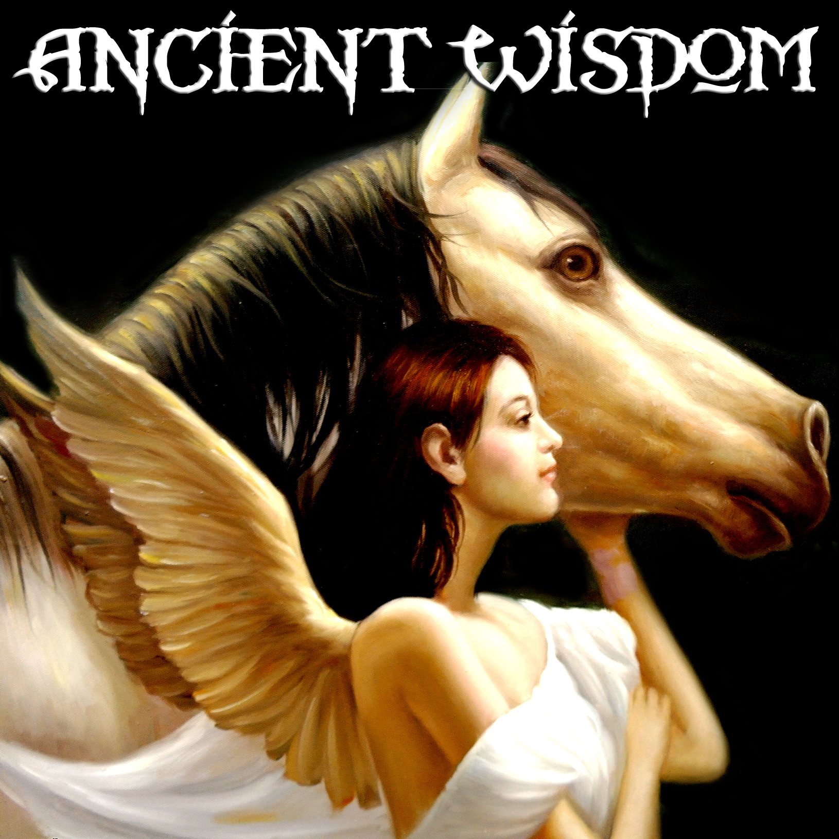 Read Ancient Wisdom Wholesale Reviews