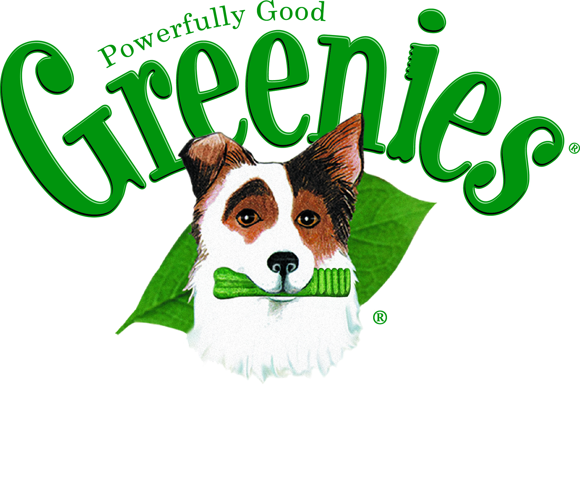 Read Greenies Reviews