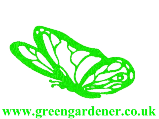 Read green gardener Reviews