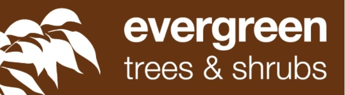 Read Evergreen Trees & Shrubs Reviews