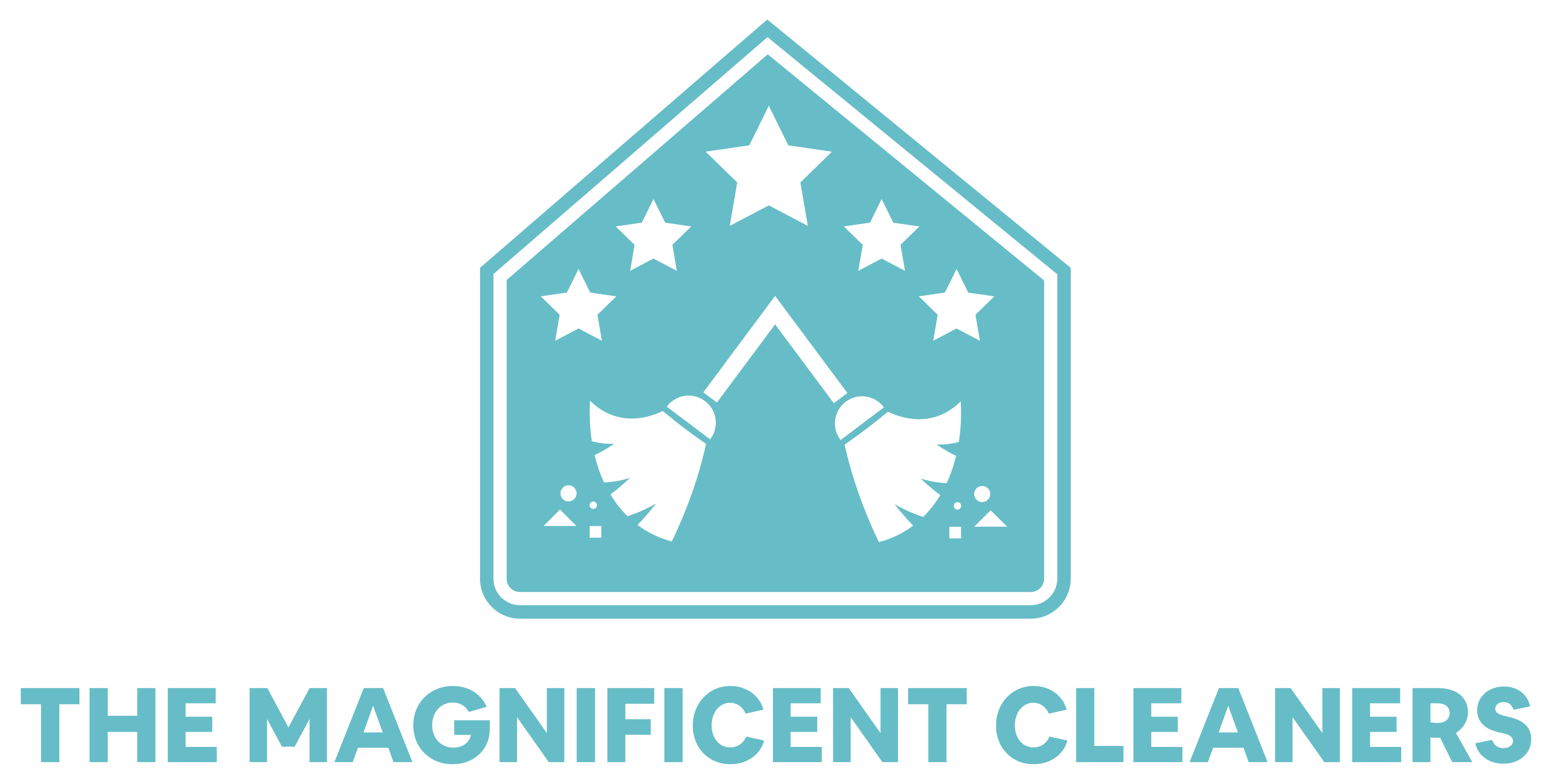 Read The Magnificent Cleaners Reviews