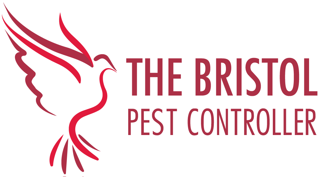 Read The Bristol Pest Controller Reviews
