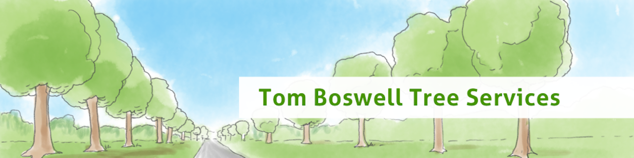 Read Tomboswelltrees.com Reviews